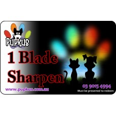 1 Blade For Sharpening